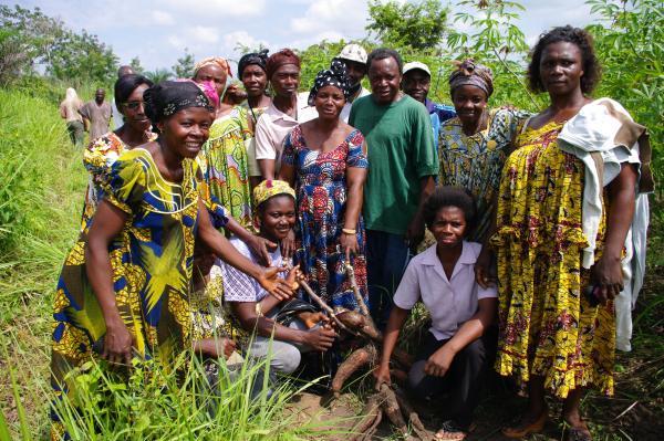 Union des groupes d'initiative commune (GIC) de Mbangassina © Cirad, D. Dufour