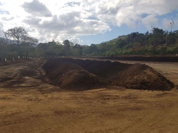 Compost heaps using the by-products obtained after pulping coffee cherries in a small unit in Costa Rica © CIRAD