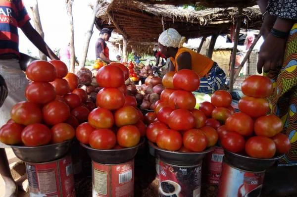 Le Cirad milite pour réinventer des systèmes alimentaires durables, résilients et inclusifs © S. Dury, Cirad