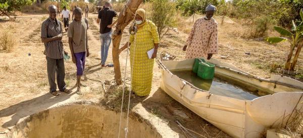 Une exploitation durable des eaux souterraines passe par une gestion collective de la ressource © R. Belmin, Cirad