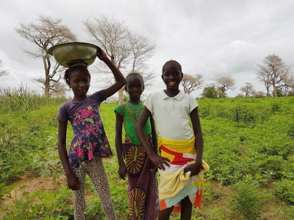 Jeunes filles au champ, Sénégal