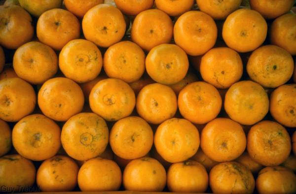Face à un marché des agrumes ultra-concurrentiel et en voie de saturation, des acteurs de la filière de 60 pays différents se sont réunis le 5 novembre 2020, pour la première édition du Global Citrus Congress. Organisé par la WCO, en partenariat avec le Cirad, cet événement est une première mondiale. © G. Trébuil, Cirad