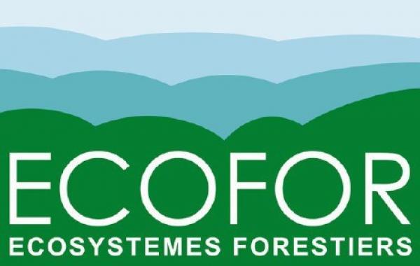 Colloque Zéro déforestation importée - Logo Ecofor