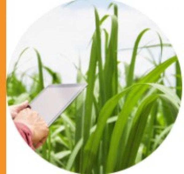 colloque agriculture et numerique
