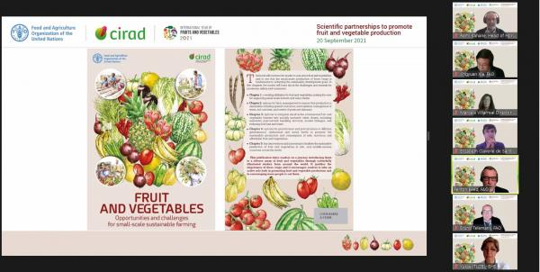 Lancement de l'ouvrage FAO-Cirad Fruits et légumes– Opportunités et défis pour la durabilité des petites exploitations agricoles à l'occasion de l'année internationale des fruits et légumes.© Cirad-FAO