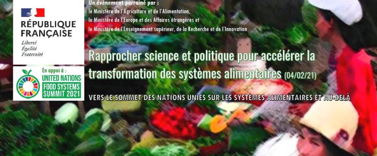 Rapprocher science et politique pour accélérer la transformation des systèmes alimentaires