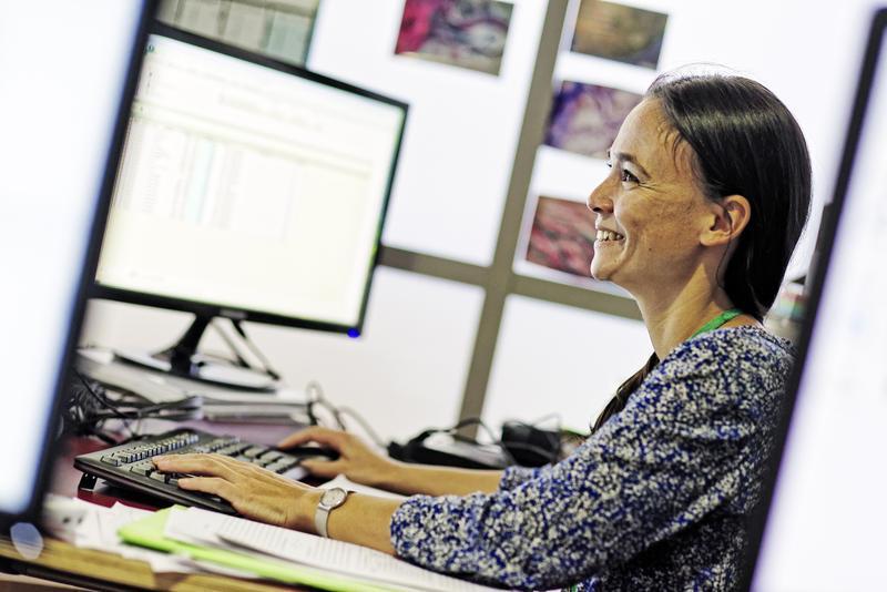 Annelise Tran du Cirad coordonne les travaux de recherche et la mise au point d'AlboRun © R. Carayol, Cirad