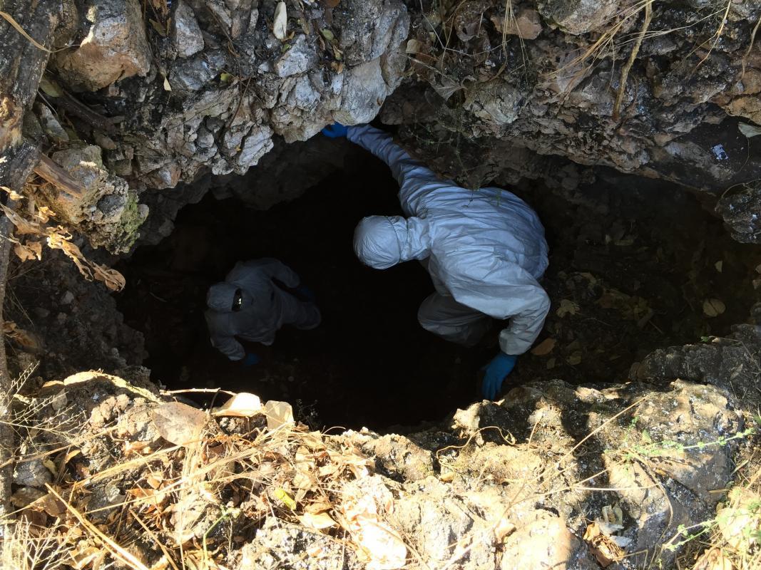 Entrée dans la grotte Magweto pour aller prélever des échantillons d'urine et de fèces, Mashonaland- Zimbabwe © M. Bourgarel, Cirad