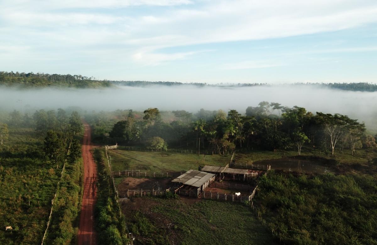 Paragominas, au Brésil, est un des cinq sites pilotes du projet TerrAmaz © R. Poccard-Chapuis, Cirad
