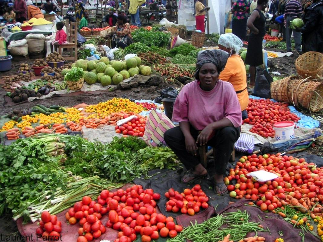 Etals de légumes (tomates, céleri, haricots verts, carottes, piments...) sur un marché au Cameroun © Laurent Parrot, Cirad