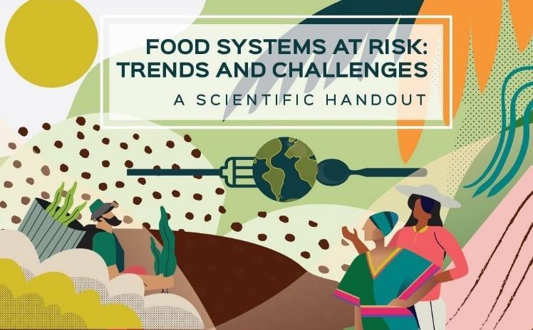 Systèmes alimentaires en danger : tendances et défis, synthèse d'un rapport commandé au Cirad par la Commission européenne (Illustration : Laurence Laffont)