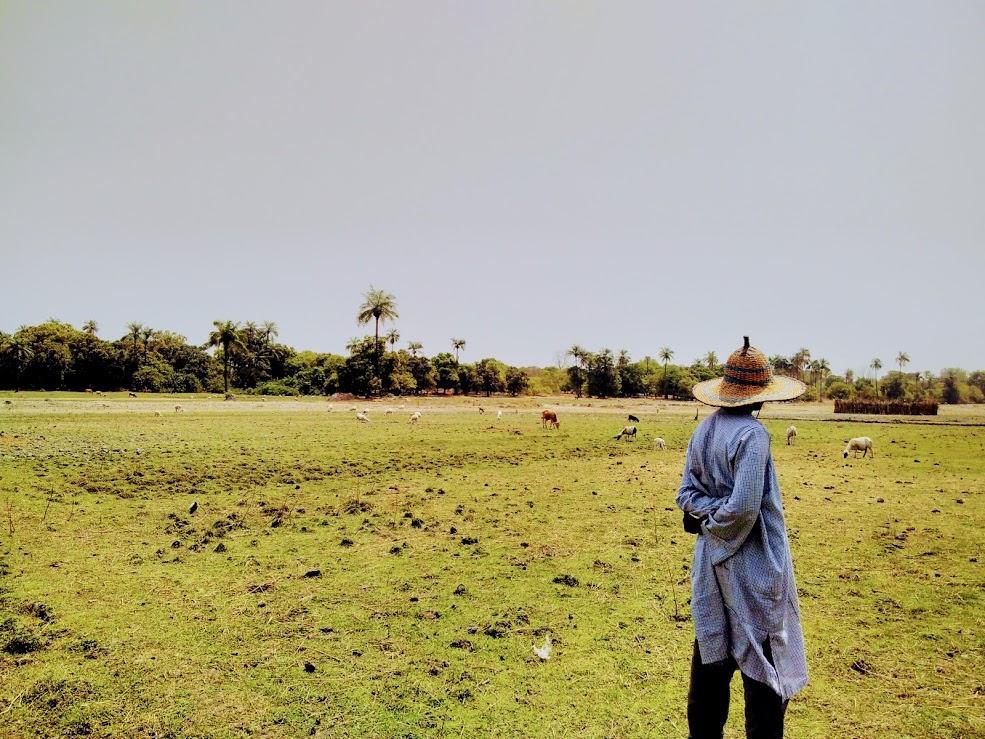 A livestock farmer in the Sahel © S. Taugourdeau, CIRAD
