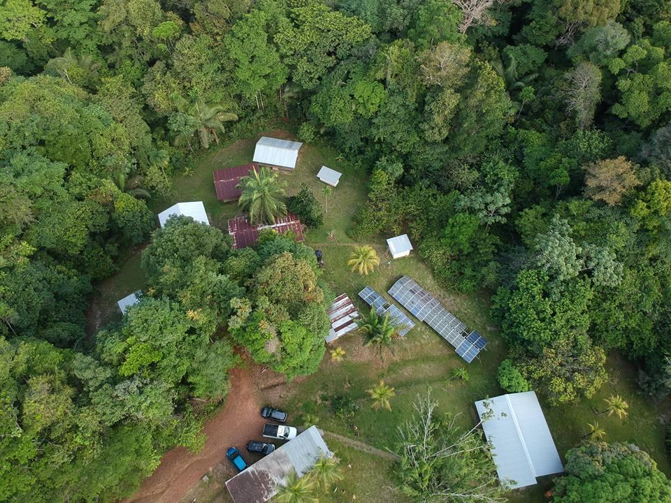 Vue aérienne de la station du Cirad à Paracou, en Guyane française. Sur ce site, plus de 70000 arbres sont mesurés régulièrement depuis le début des années 1980, fournissant un précieux jeu de données pour comprendre les changements opérant dans les forêts tropicales sous l'effet des pressions anthropiques. © A. Dourdain, Cirad