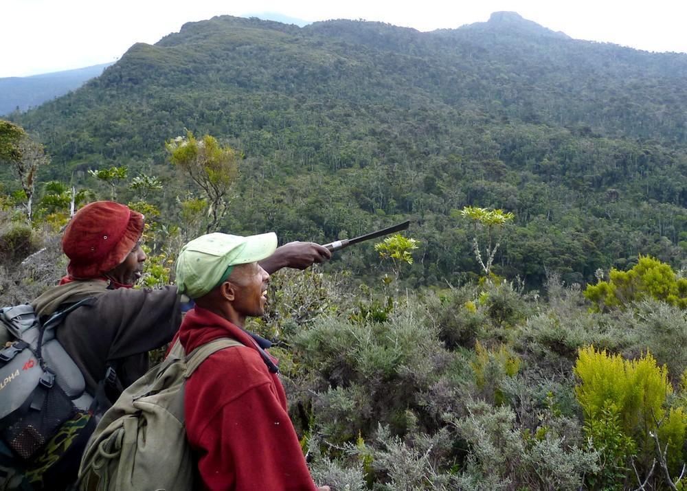 Madagascar a perdu 44 % de ses forêts naturelles depuis les années 50 et le rythme de la déforestation s'accélère © G. Vieilledent, Cirad