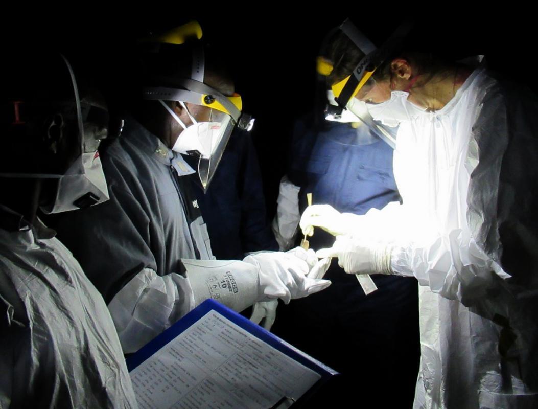 Prélèvements sur chauves-souris par l'équipe Cirad-DVS-OGUIPAR en Guinée © H.De Nys, Cirad