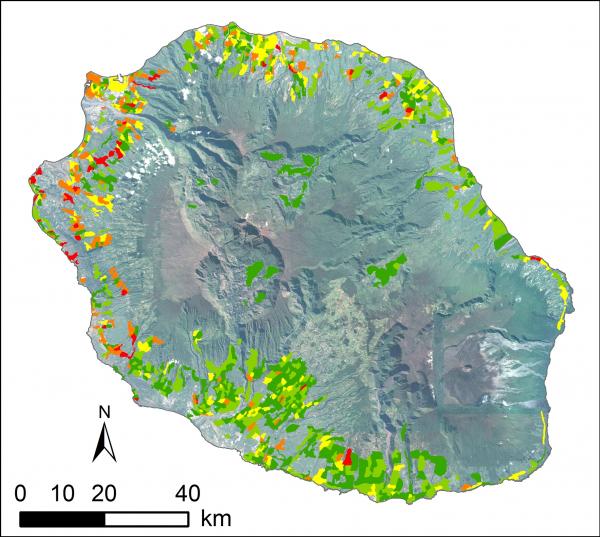 Carte de densité de moustiques tigres générée par AlboRun, janvier 2018, La Réunion © Cnes & Cirad