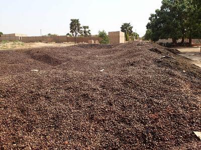 Le décorticage des noix de cajou produit des grandes quantités de coques très acides et corrosives, qui peuvent être utilisées comme combustible pour produire de l'énergie. © J. Blin, Cirad