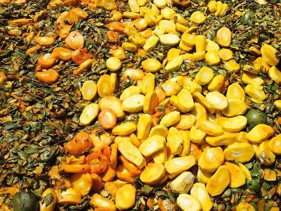 Dans la fabrication de mangue séchée, les séchoirs sont habituellement alimentés au gaz naturel. Grâce au projet Biostar, cette source d'énergie pourra être remplacée par du gaz renouvelable, produit à partir des noyaux et des peaux de la mangue. © J. Blin, Cirad