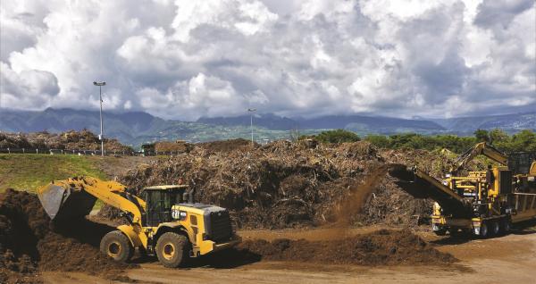 Le broyat de déchets verts peut être associé au co-compostage des effluents d'élevages © Cirad
