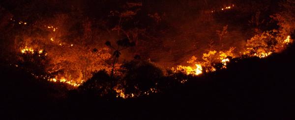 En 2015 à Paragominas (Brésil), 183 000 hectares de forêts sont partis en fumée © R. Poccard-Chapuis, Cirad