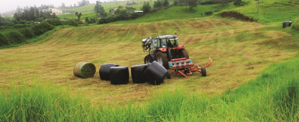 L'ensilage permet de stocker le fourrage estival en vue de le vendre à d'autres éleveurs déficitaires © Cirad