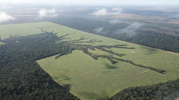 Pour une organisation efficiente des paysages, les surfaces non favorables à l'agriculture sont abandonnées et le couvert forestier se restaure progressivement. Des corridors forestiers peuvent ainsi se reconnecter avec la matrice forestière © R. Poccard-Chapuis, Cirad