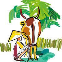 Dairy value chain illustration © Delphine Guard-Lavastre, CIRAD