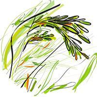 Rice value chain illustration © Delphine Guard-Lavastre, CIRAD