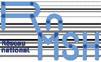 RnMSH - Logo