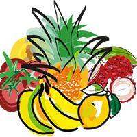Fruits and vegetable value chain illustration © Delphine Guard-Lavastre, CIRAD