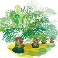 Illustration filière palmier à huile. © Delphine Guard-Lavastre, Cirad