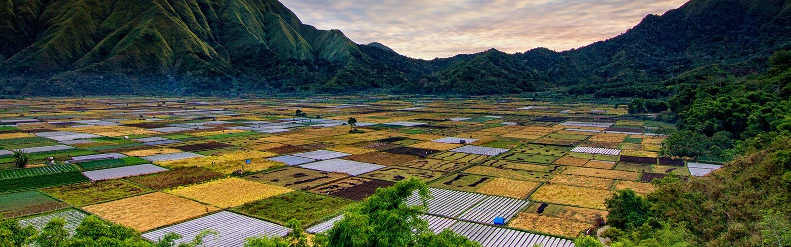 TER-koes-nadi-unsplash Paysage d'Indonésie Unsplash © K. Nadi